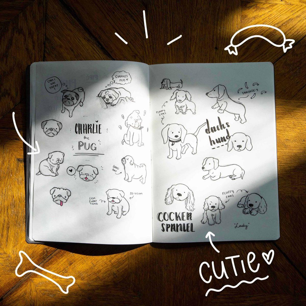 Pug-, Dachshund- & Cocker Spaniel Sketches